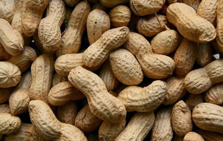 peanut in India