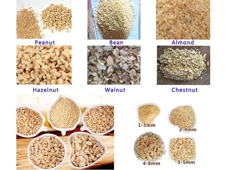 Peanut-Beans-Almond-Hazelnut-Walnut-Chestnut
