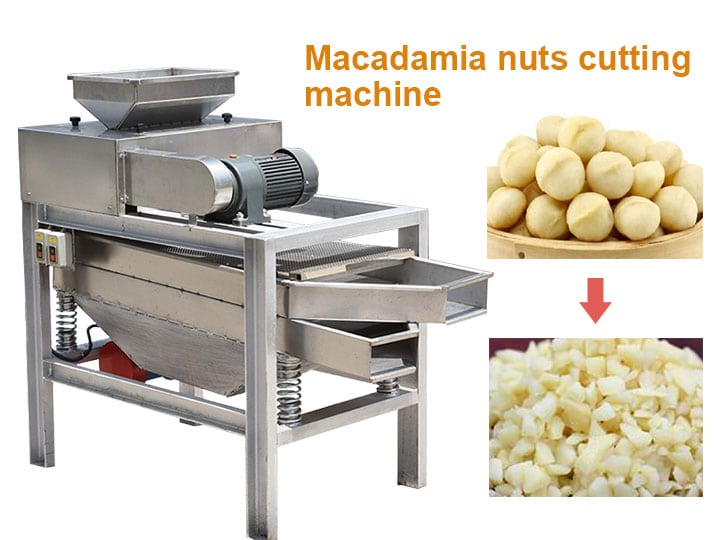 Macadamia nuts cutting machine