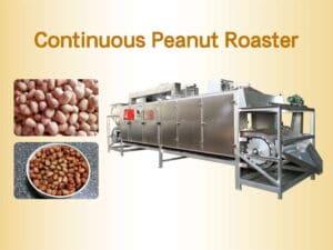 Continuous Peanut Roaster