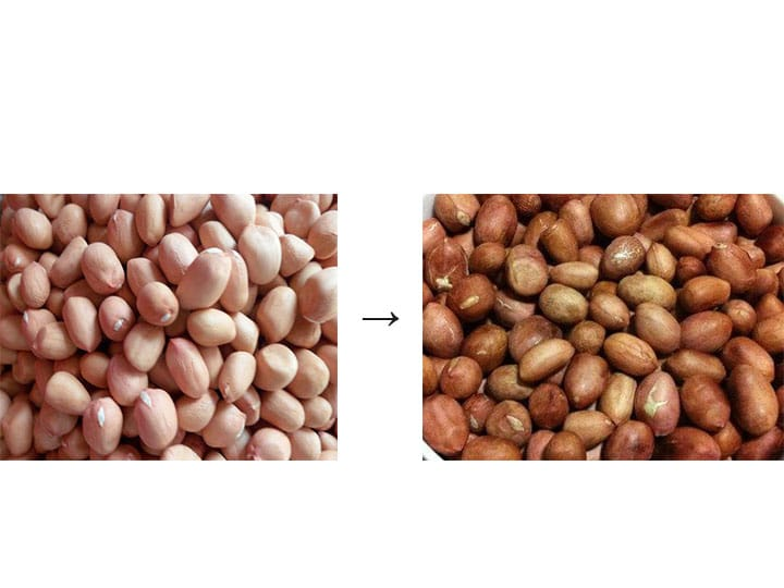 raw peanuts and roasted peanuts