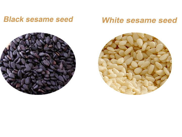 sesame seed of two kinds