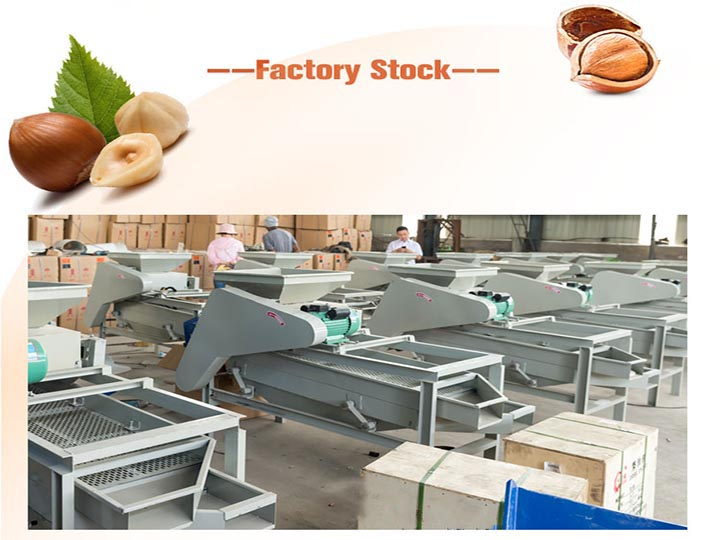 Almond shelling machine in factory