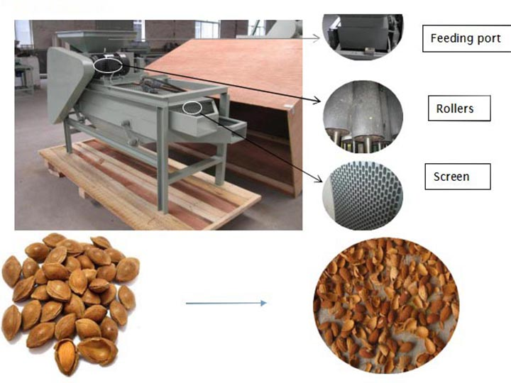 Almond shelling machine structure details