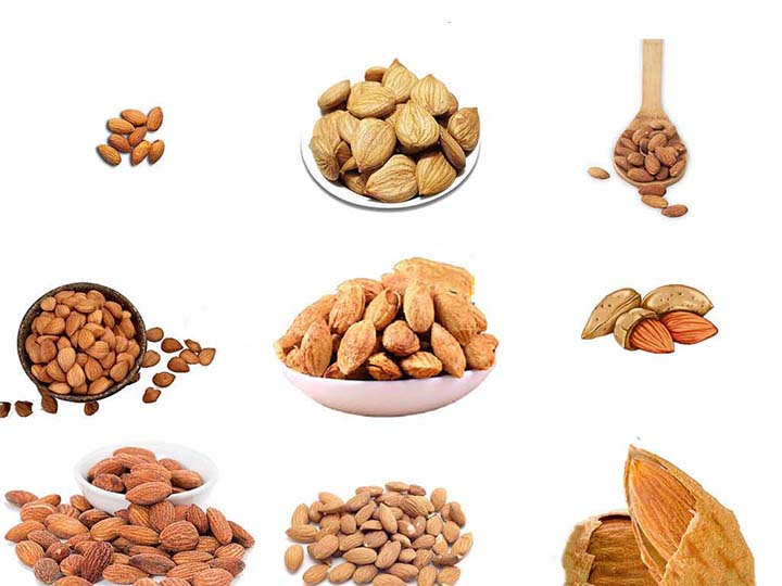 almond and other nuts