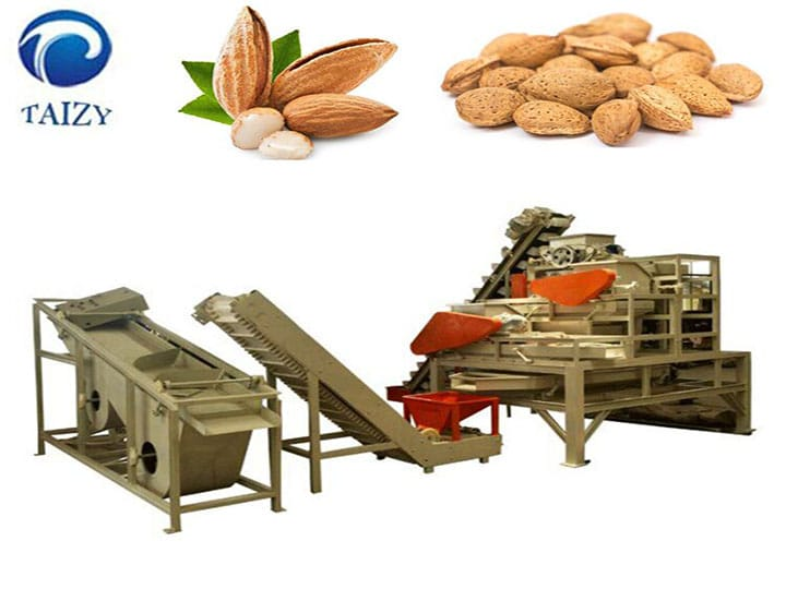 the almond cracking line